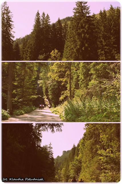 http://kluskowopl.blogspot.co.uk/2012/09/migawki-w-tatr.html