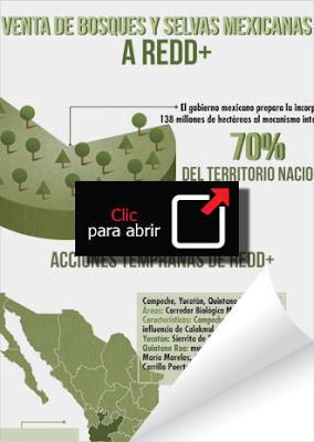 vendidas 138 millones de hectáreas de territorio mexicano