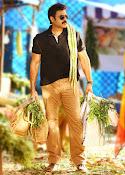 Babu Bangaram movie photos gallery-thumbnail-3