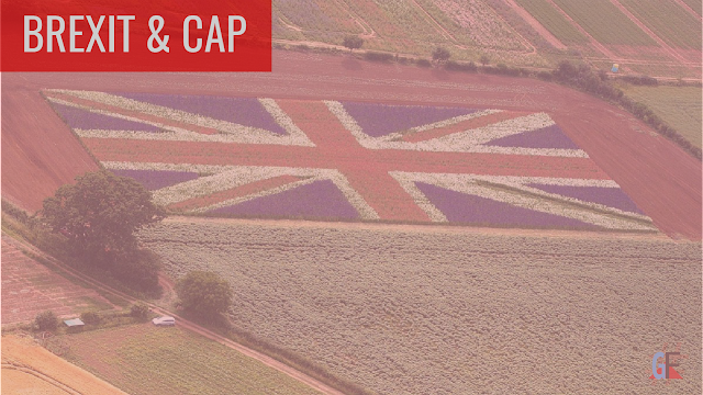 European Common Agricultural Policy and Brexit