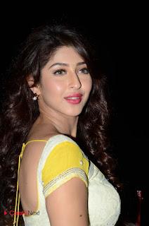 Actress Sonarika Bhadoria Stills in Yellow Saree  0113
