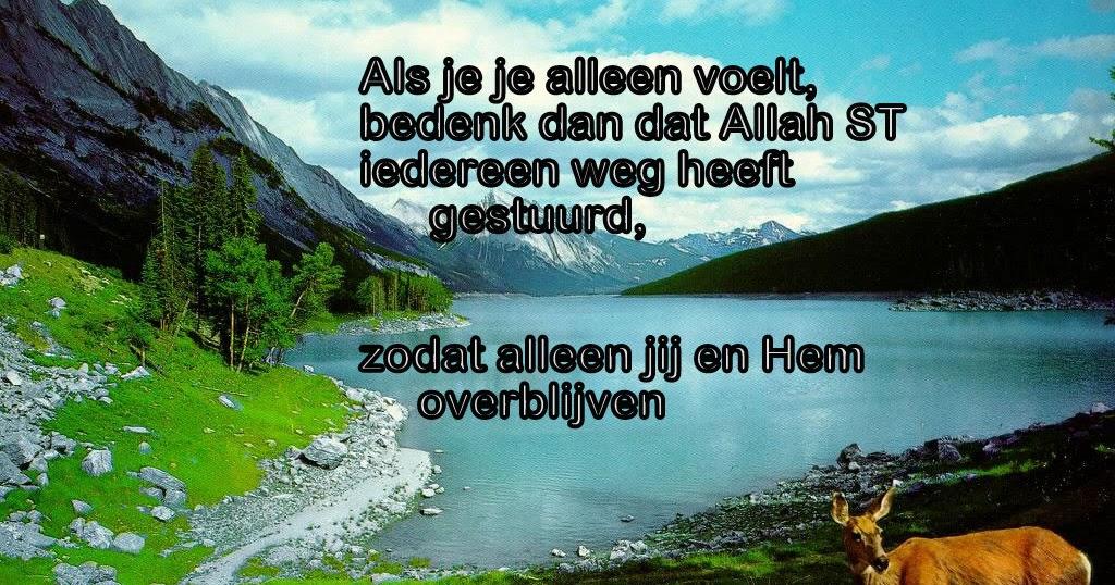Beroemd Citaten en Wijze Woorden uit de Islam: Als je je alleen voelt... #PO86