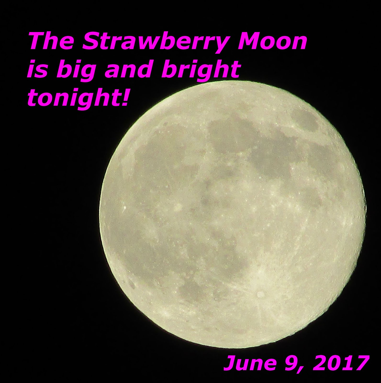 Big bright Moon--in the month of June!