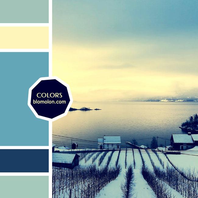 variedad_en_color_moodboard_67