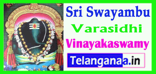Kanipakam varasidhi vinayakaswamy Chittoor Andhra Pradesh India