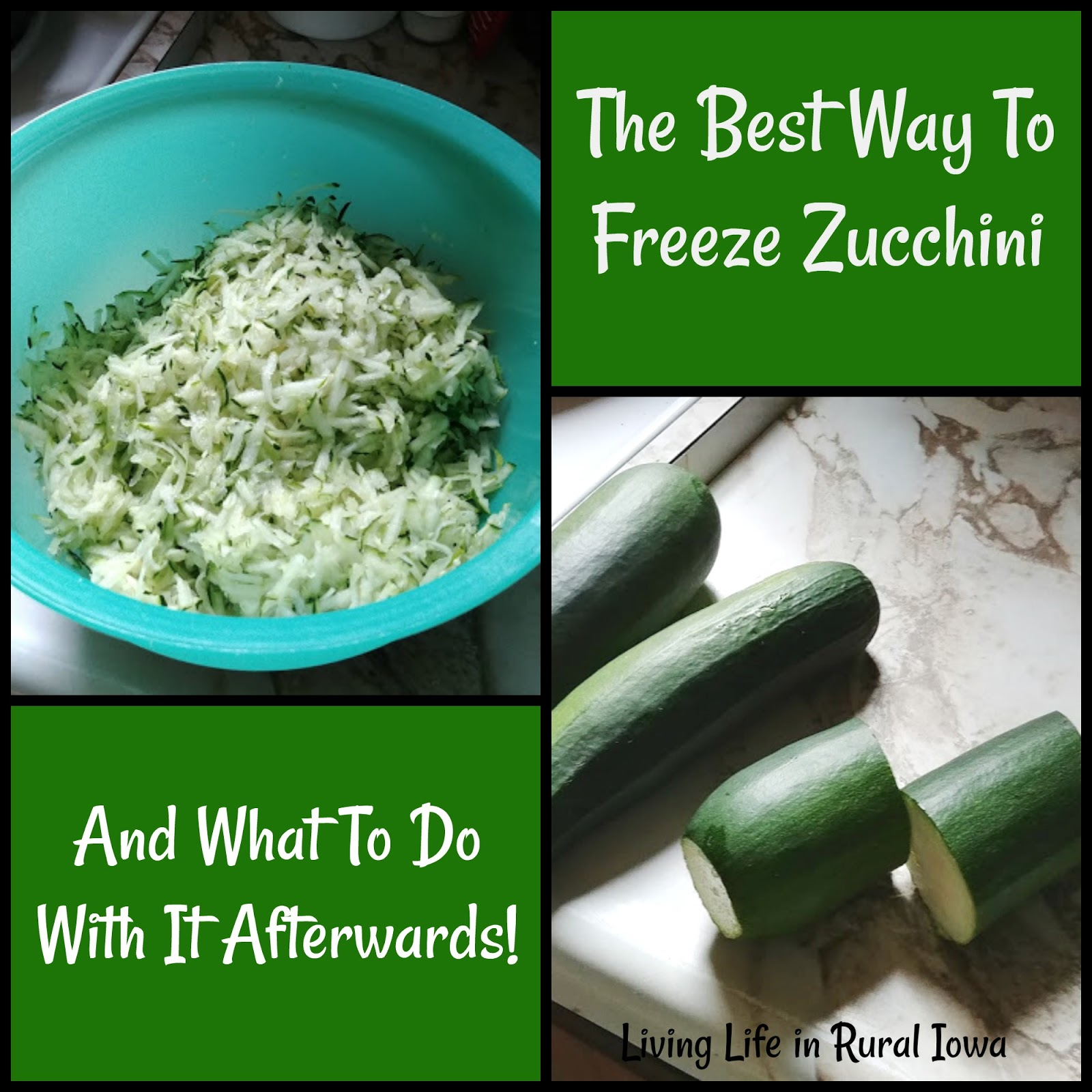 Zucchini is also (normally) very prolific meaning that it will produce very well for weeks if not months.  sc 1 st  Living Life in Rural Iowa & Living Life in Rural Iowa: food storage