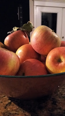 apples picked at Carter Mountain Orchard 11/10/17