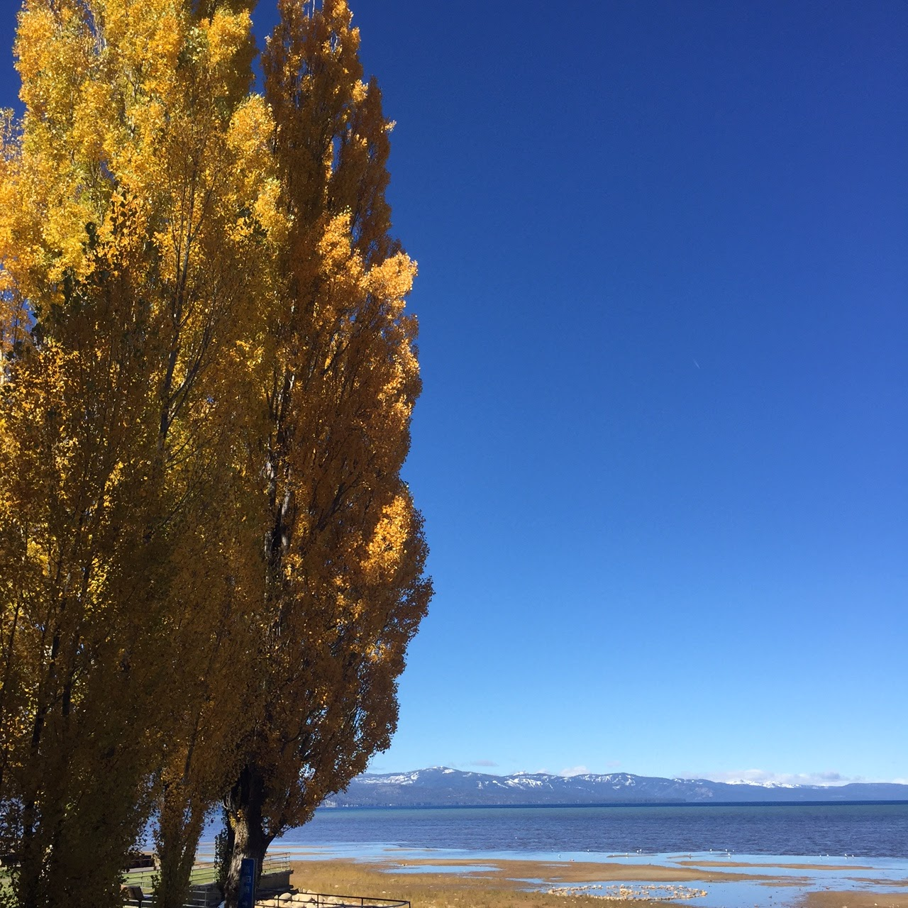 Beautiful Lake House Homes: The Unpaved Road: California Road Trip: Beautiful Lake Tahoe