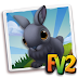 Fv 2 Black Polish Rabbit  (baby ,adult,prized)