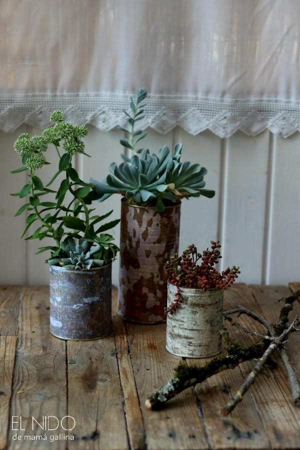 tree bark flower pot