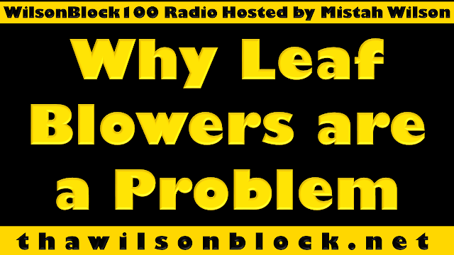 """""""Why Leaf Blowers are a Problem"""" by Mistah Wilson on WilsonBlock100 Radio (((AUDIO)))"""