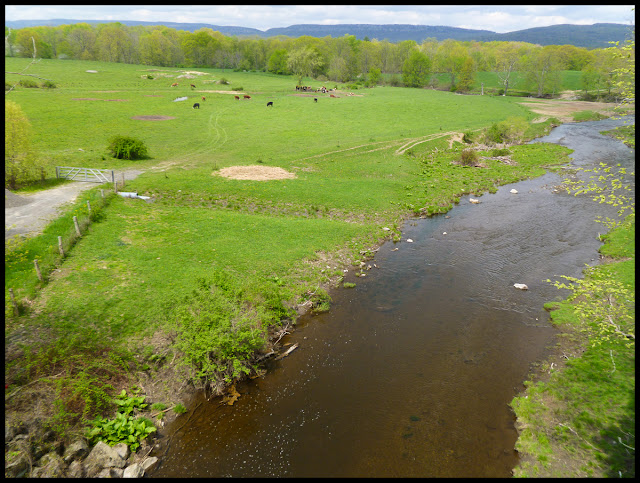 Plattekill Creek near New Paltz, NY.