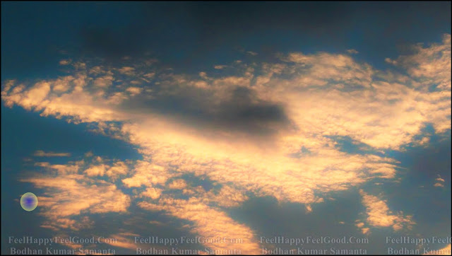 FeelHappyFeelGood Sky Color Flower Photography