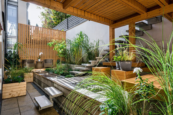 Backyard garden and patio design