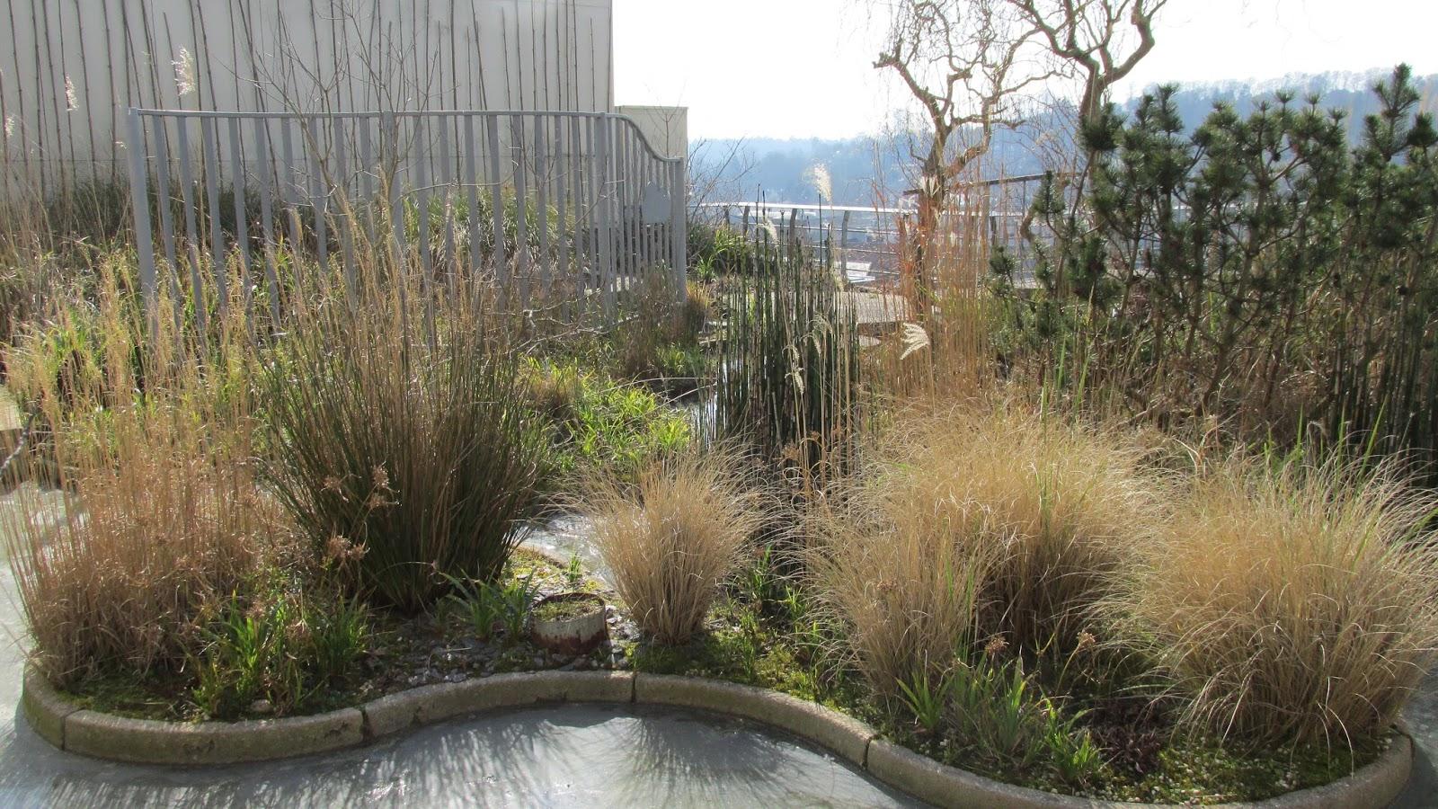 crimson kettle: Parks and Gardens Guildford