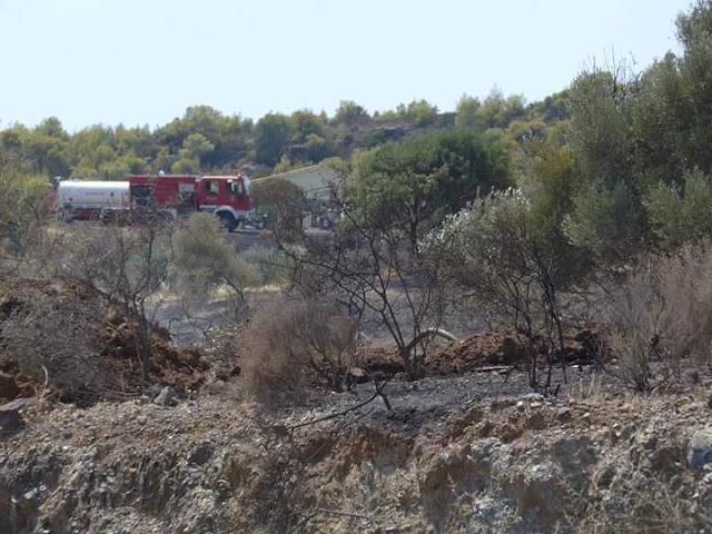 Πυρκαγιά στην Πετροθάλασσα Ερμιονίδας απείλησε κατοικίες