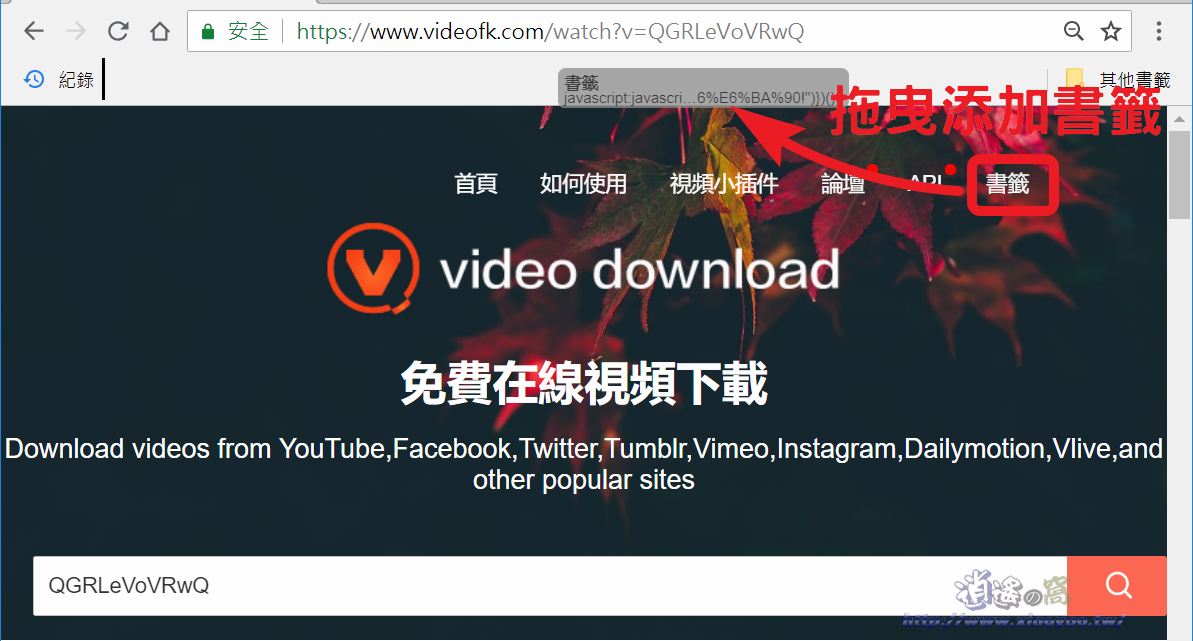 VideoFk 下載網路影片和圖片