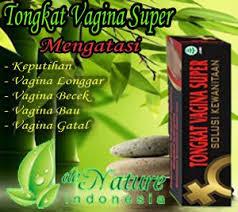 Resep Merapatkan Vagina/ Miss V di Magelang