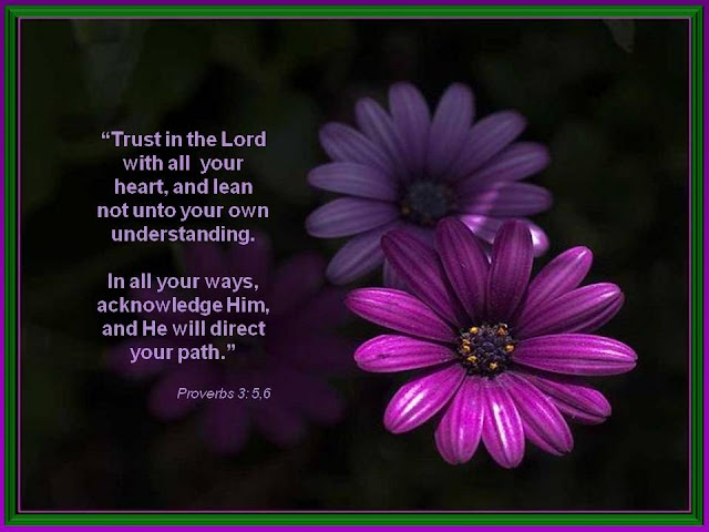 Trust in the Lord Proverbs 3:5,6 Wallpaper