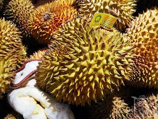 Durian właściwy (Durio zibethinus) - uprawa domowa z nasion. Siew duriana z pestki. Owoc, nasiona i siewka duriana. Jak kiełkuje durian? Jak wysiać duriana? Jak smakuje durian, gdzie w Chinach jedzą duriany?