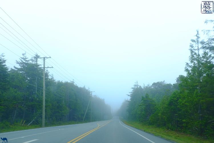Le Chameau Bleu - Route de Tofino - Ile de Vancouver Canada