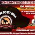 É neste domingo o II Encontro de Pit Bull em Pintadas