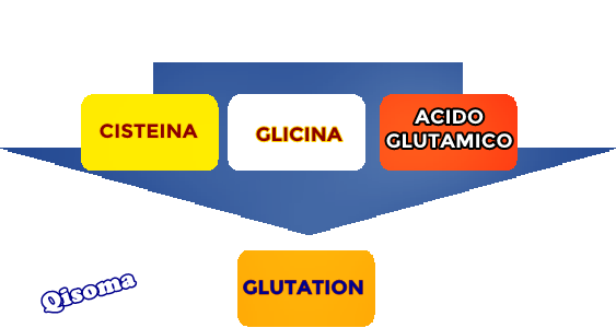 Glutation-proceso
