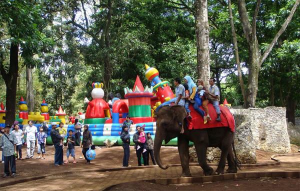 Menunggang gajah di Kebun Binatang Bandung