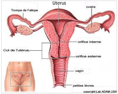 5 signes de cancer du col de l'utérus