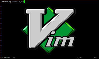 Belajar Cara Menggunakan Editor Vim di Linux CentOS