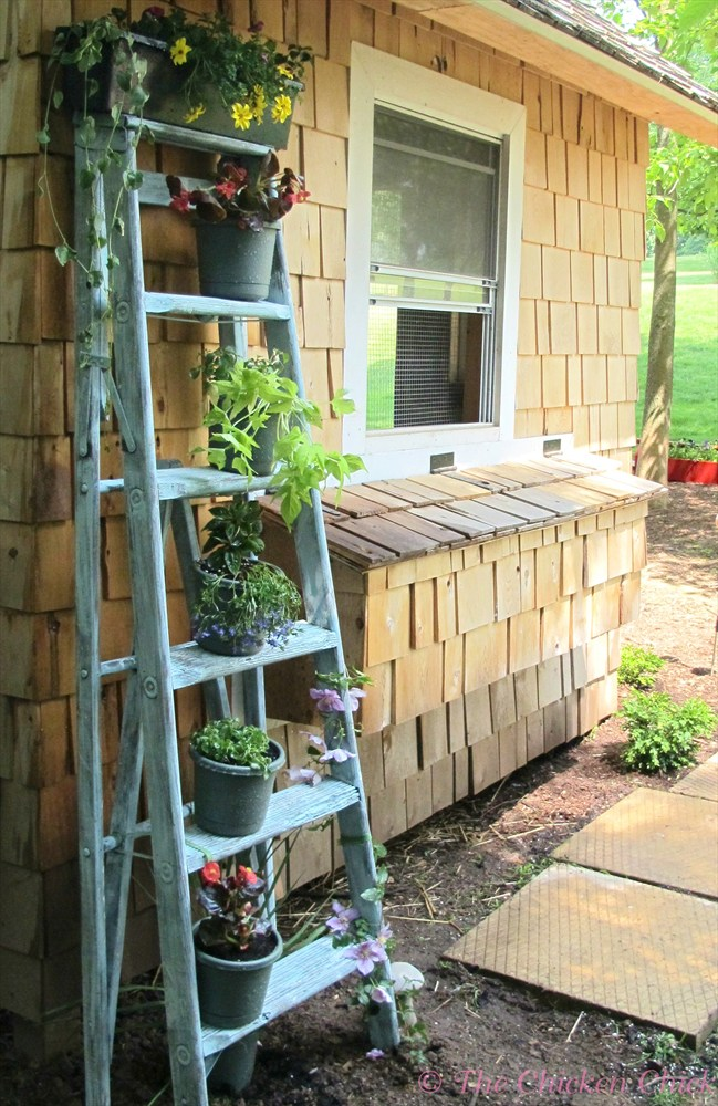 Upcycled Ladder Turned Planter The Chicken Chick 174