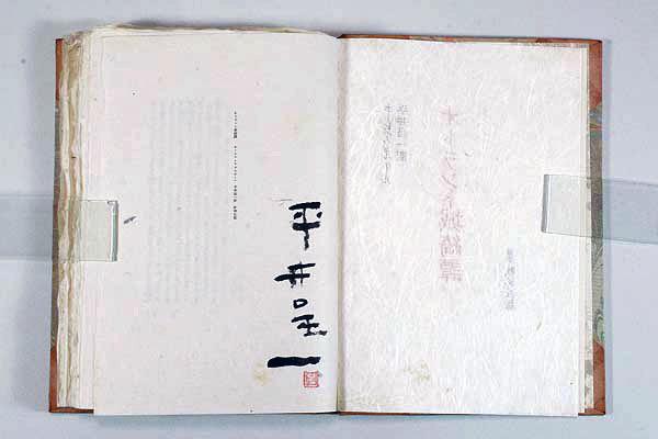 偏愛的収集記-暢気・気儘な箱々: 書籍 : 平井呈一譯 オトラント城綺譚
