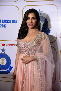 Bollywood Actress Model Sophie Choudry Stills in a Beautiful Dress at The Annual Central Excise Day Celetion  0003.jpg