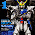 Mobile Suit Gundam SEED DESTINY ASTRAY Re: Master Edition 1 and 2