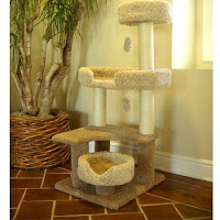 Carpeted Cat Trees