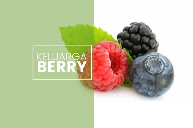 Inilah Manfaat Buah Keluarga Berry