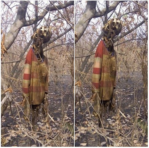 Woman Missing For Months Found Dead With Corpse Hanging On A Tree