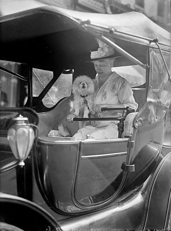Женщина с собачкой за рулём старинного автомобиля