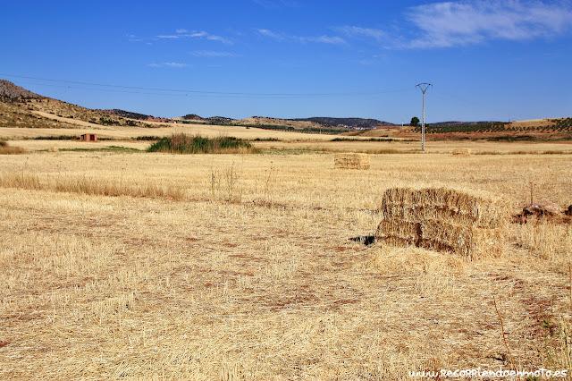 Posible manantial del barranco grande, Aldea del Rey