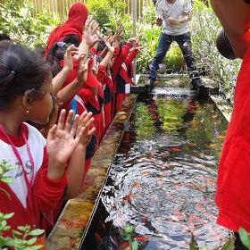 Menjadi Wisata Edukasi anak-anak Fish Garden Blitar