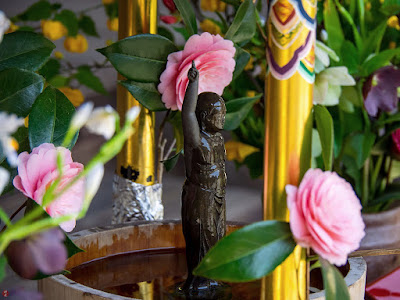 Hana-matsuri (the anniversary of the birth of Buddha): Kaizo-ji