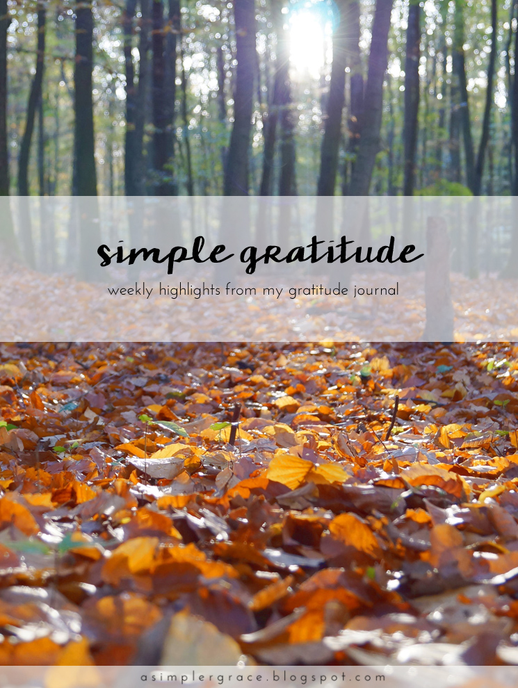 A weekly series focusing on practicing gratitude.  #gratefulheart #gratitude #feelingthankful - Simple Gratitude | 47 - A Simpler Grace