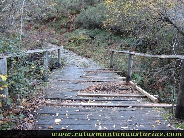 Puente en la pista