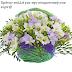 Καλάθια λουλουδιών με ευχές ονομαστικής εορτής.....giortazo.gr