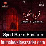 http://www.humaliwalayazadar.com/2016/09/syed-raza-hussain-nohay-2017.html