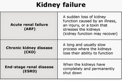 american kidney cancer