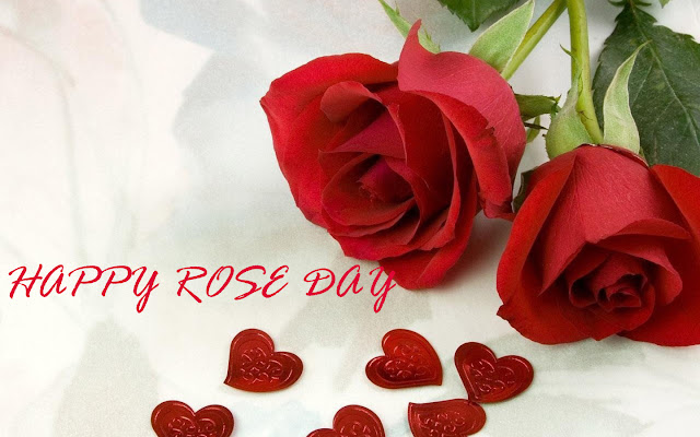 rose day wallpaper hd