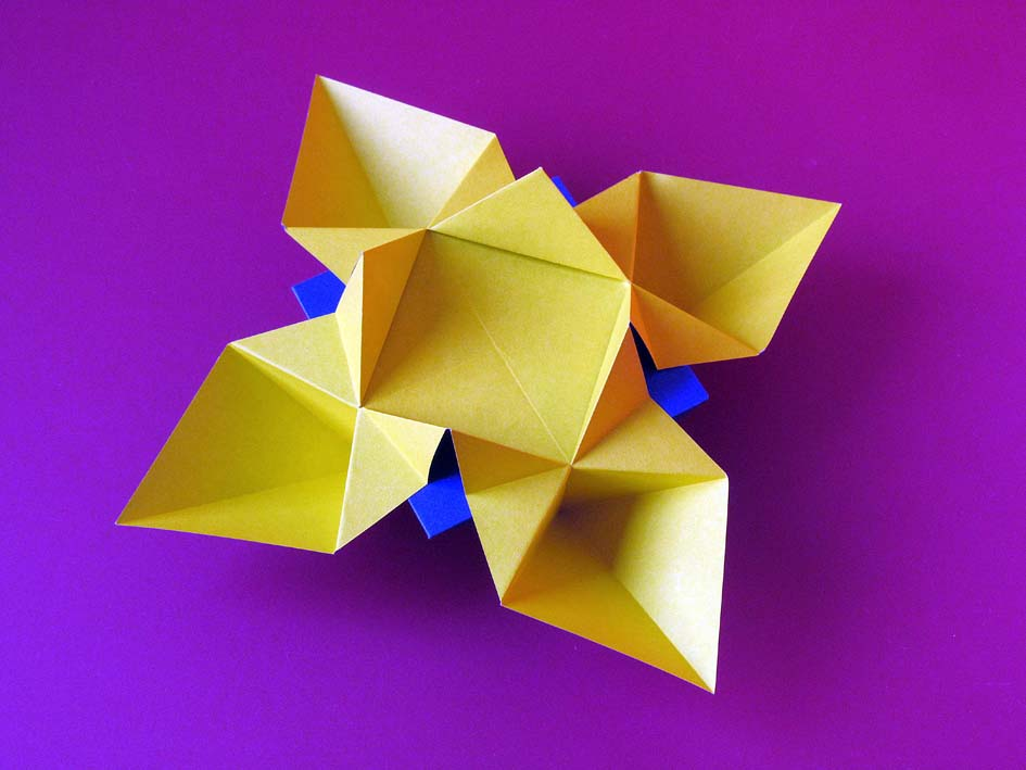 Origami Fiore o Stella by Francesco Guarnieri