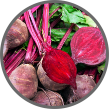 le belle, beetroot, beetroot bahasa indonesia, beetroot indonesia, sugar beet, beetroot juice, komponen sugar beets, manfaat buat beet, beet kiens,