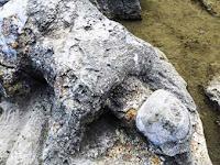 Batu Malin Kudang, Padang